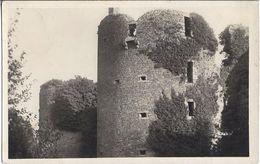 CPSM - Photo - HERBIGNAC - Château De Ranroët - Herbignac