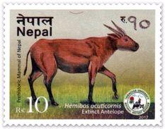PREHISTORIC ANTELOPE Rs.10 ADHESIVE POSTAGE STAMP NEPAL 2017 MINT/MNH - Wild