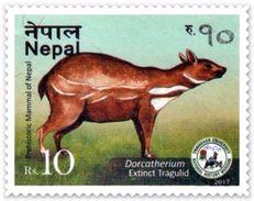 PREHISTORIC TRAGULID Rs.10 ADHESIVE POSTAGE STAMP NEPAL 2017 MINT/MNH - Postzegels