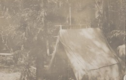 Cambodge - Siam Thailand - Protectorat Français - Colonial - Photographie Fin XIXème - Forêt Près Du Klong Jin Fnam - Cambodge