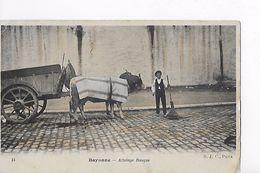 64 / BAYONNE / ATTELAGE BASQUE / NON DIVISEE / - Biarritz