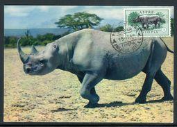 Ethiopie - Carte Maximum 1966 - Animaux - Le Rhinocéros - Ethiopia