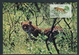 Ethiopie - Carte Maximum 1966 - Animaux - Le Léopard - Ethiopie