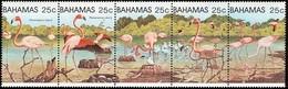 BAHAMAS 1982 Birds, Caribbean Flamingo, Fauna MNH - Bahamas (1973-...)