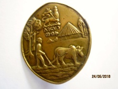 Ethiopie: Haile Selassie Conservation Pin Protect Your Land Shirt - Pin Lion Of Judah Rasta - Badges
