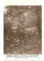 ---- 75 ---- PARIS -  Salon De 1905 -  Henri Biva Temps Couvert L'étang Aux Nénuphars  Villeneuve Neuve Excellent état - Paintings