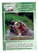 Cpm - Animaux - Hippopotame - Hippopotames - - Hippopotames