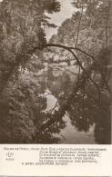 ---- 75 ---- PARIS -  Salon De 19 **  Henri BIVA Sur Le Pont De Villeneuve Temps Couvert - Neuve Excellent état - Paintings