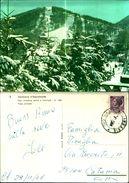7095a)cartolina- Gambarie D'aspromonte - Reggio Calabria