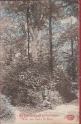 Schoten Schootenhof Pittoresque Une Vue Dans Le Parc Ingekleurd Colorisee ZELDZAAM Geanimeerd - Schoten