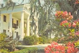 BOONE HALL PLANTATION NEAR CHARLESTON - Charleston
