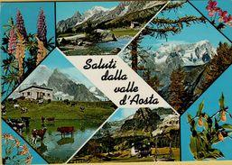 142025 SALUTI DALLA VALLE D' AOSTA - Non Classificati