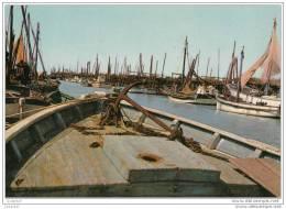 Beauvoir-sur-mer - Port De L'epoids - Beauvoir Sur Mer