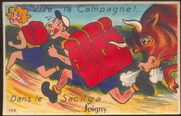 Vive La Campagne.- DANS LE SAC IL Y A JOIGNY - Joigny