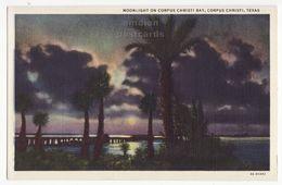 Moonlight On Corpus Christi Bay Texas TX, 1930s Vintage Linen Curt Teich Postcard M8518 - Corpus Christi
