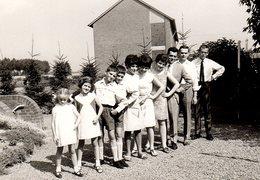 Photo Originale 1967 - La Famille Dalton S'est Considérablement Agrandie ! 10 Enfants Rangés Par Taille & Sapins épicéa - Personnes Anonymes