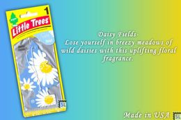 Daisy Fields, LITTLE TREES CAR-FRESHNERS, Carded Air Fresheners, Made In USA, NEW - Accessories