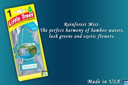Rainforest Mist, LITTLE TREES CAR-FRESHNERS, Carded Air Fresheners, Made In USA, NEW - Accessories