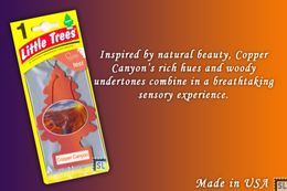 Copper Canyon, LITTLE TREES CAR-FRESHNERS, Carded Air Fresheners, Made In USA, NEW - Accessories