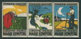 Suisse // Schweiz // Switzerland // Vignette Maggi Kempttal 3 Vignettes Se Tenant - Switzerland