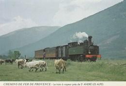 Dép. 06. CPSM - Chemins De Fer De Provence - Le Train à Vapeur Près De St André Les Alpes. - France