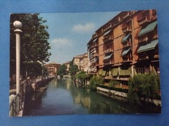 CARTOLINA FORMATO GRANDE VIAGGIATA TREVISO RIVIERA REGINA MARGHERITA - Treviso