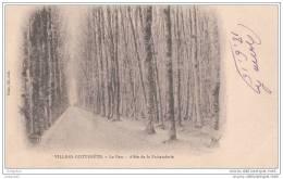 Villers-cotterets - Parc - Allee De La Faisanderie - Villers Cotterets