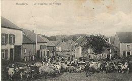 Messancy - Le Troupeau Du Village Animé - Cochons, Chèvres Et Gardien - Circulé Vers Allemagne 1915 Feldpost VOIR VERSO - Messancy