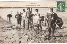 17 ILE DE Ré Retour De Pêche Aux Huitres - Ile De Ré