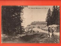 MIA-24 Jura VAudois Hotel Du Marchairuz, Vaches Au Paturage.  Cachet Le Marchairuz 1917 - VD Vaud