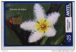 Uruguay TC472a Flores -Estrella De Agua- - Uruguay