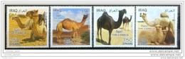 Iraq 2013 MNH - THE CAMELS - Animals - Fauna - Desert - Irak