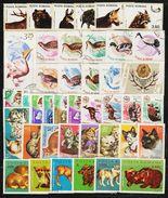 ROMANIA - 40 FAUNA Postage Stamps (1) - Sammlungen (ohne Album)