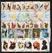 ROMANIA - 40 FAUNA Postage Stamps (2) - Postzegels