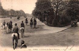 PARIS -75- L'AVENUE DU BOIS DE BOULOGNE - Parks, Gardens