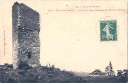 ----31 ----   SALIES DU SALAT  La Tour Du Vieux Château TB - Salies-du-Salat