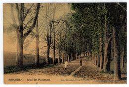 Tervueren - Allée Des Maronniers - Tervuren