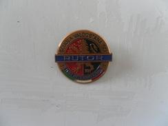 BROCHE RUTOR, TEST INTERNATIONAL - Pin