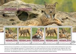 M1 84 ++ The Netherlands - Postfris / MNH - Sheet Endangered Animals, Lynx 2017 - 2013-... (Willem-Alexander)