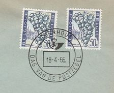 1966  BELGIUM COVER EVENT Pmk TORNHOUT STAMP DAY ,2x 50c GRAPES Stamps Fruit - Fruits