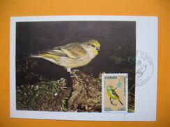 Carte Maximum  1974   Oiseaux - Andorre - Passereaux - Songbirds & Tree Dwellers