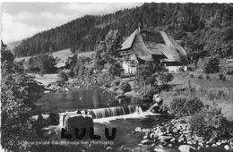 ALLEMAGNE : Schwarzwald Bauernhaus Bei Hornberg - Albstadt