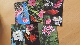Lot De  6 Cartes Postales Neuves Années 70 Fleurs De Tahiti Très Bon état Dos Partagé - Polynésie Française