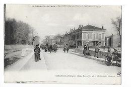 MONTELIMAR  (cpa 26)  L'Avenue D'Aygu -  - L 1 - Montelimar