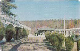 Arkansas Hot Springs Scene Of Mountain Valley Mineral Water Spri