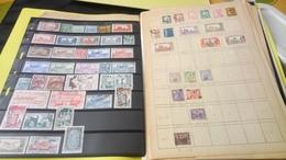 D174 LOT FEUILLES TUNISIE NEUFS / OB A TRIER BELLE COTE DÉPART 10€ - Sammlungen (im Alben)