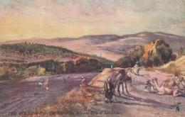 Tucks Oilette Series III #7310, The Holy Land Site Of City Of Samaria, Present-day Palestine C1900s/10s Vintage Postcard - Palestine