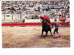 Corrida De Toros, Passe Haute, Matador, Ed. Estel 1990 Environ - Corrida