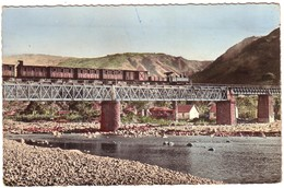 ILE DE LA REUNION - Pont De La Rivière Saint-Denis Et Le C.F.R. - La Réunion