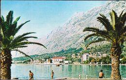 Montenegro Kotor 1967 / Panorama - Montenegro